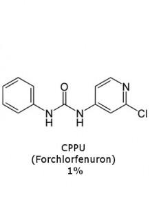 CPPU (Forchlorfenuron) 1%