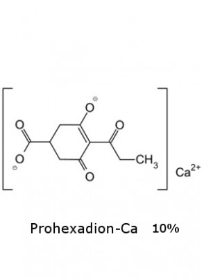 Prohexadion-Ca (10%)