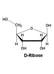 D-Ribose (97%)